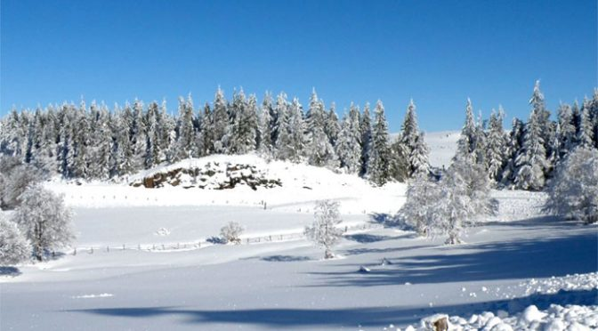 Week-en raquettes et ski à Nasbinals (12) 1 et 2 février 2020